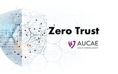 Digital Crisis Response for Zero Trust Security Model